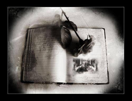 libro con flor marchita